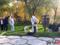 crima Gabriela Dorgai (22)