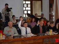 sedinta consiliul judetean (11)