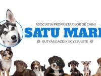 Sâmbătă se constituie Asociația Proprietarilor de Câini din Satu Mare