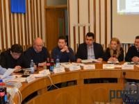 consiliul local (17)