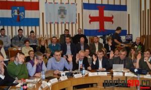 consiliul local (37)