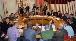 Consiliul Local (22)