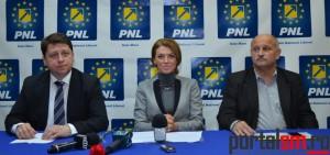 Romeo Nicoara, Alina Gorghiu, Vasile Berinde (12)
