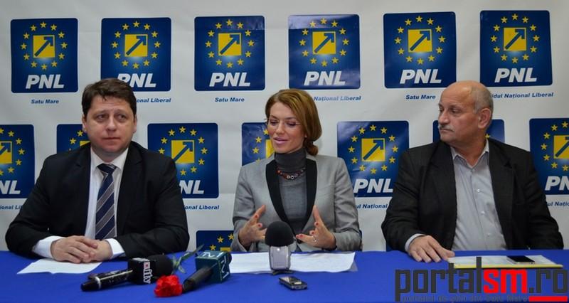 Romeo Nicoara, Alina Gorghiu, Vasile Berinde (14)