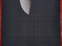 expozitie foto, Robert Costea, Muzeul de Arte (34)