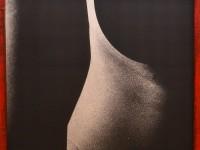 expozitie foto, Robert Costea, Muzeul de Arte (9)