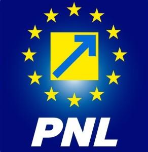 PNL Satu Mare are stabiliţi 30 de candidați. Andreea Paul a anunțat numele