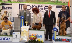 best in show ziua 2 (213)
