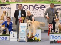best in show ziua 2 (226)