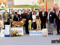 best in show ziua 2 (261)