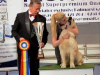 best in show ziua 2 (280)