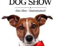 Expoziţie internaţională de câini, în week-end la Satu Mare. Peste 120 de rase în competiţie