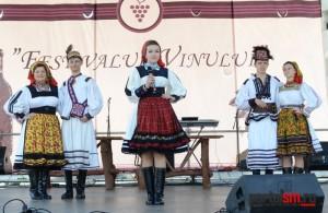 festivalul vinului (1)