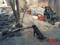 incendiu 6 morti satu mare (17)