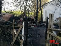 incendiu 6 morti satu mare (7)