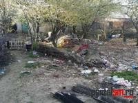 incendiu 6 morti satu mare (9)