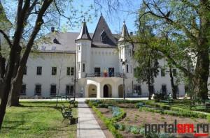 Castelul Karolyi Carei (131)
