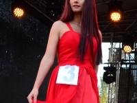 Miss Ziua Orasului Satu Mare 2015 (265)