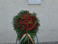 Ziua Eroilor la Satu Mare (14)