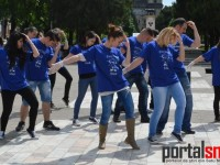 flash mob asociatia stea (10)