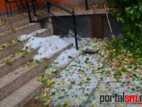 grindina in Satu Mare (2)