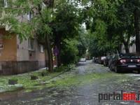 grindina in Satu Mare (69)