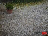 ploaie cu gheata in Satu Mare (4)