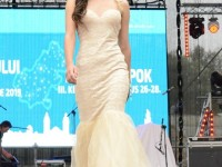 Miss Judetul Satu Mare 2015 (87)