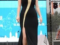 Miss Judetul Satu Mare 2015 (89)