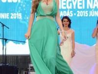 Miss Judetul Satu Mare 2015 (91)
