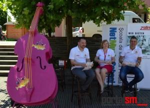 Festival muzica de strada (11)