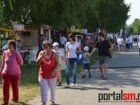 Festivalul Spicului de Aur, Ungaria (11)