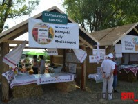 Festivalul Spicului de Aur, Ungaria (3)