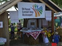 Festivalul Spicului de Aur, Ungaria (6)
