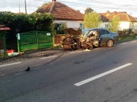 accident ciuperceni (9)