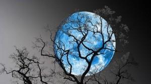 blue_moon1_36338700
