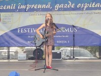 festivalul-samus-botiz (7)