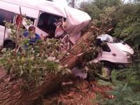accident microbus apa (4)