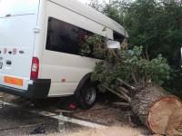 accident microbus apa (6)