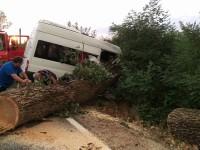 accident microbus apa (7)