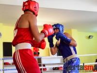 box, Ficiu Marian, Eusebiu Aradoaie, Satu Mare (1)
