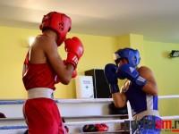 box, Ficiu Marian, Eusebiu Aradoaie, Satu Mare (24)