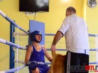 box, Ficiu Marian, Eusebiu Aradoaie, Satu Mare (34)