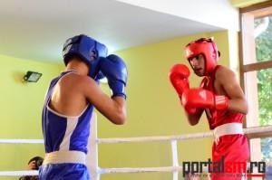 box, Ficiu Marian, Eusebiu Aradoaie, Satu Mare (50)