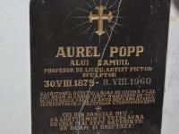 comemorare Aurel Popp (5)