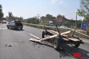 accident vetis (7)