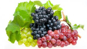 grapes_bunches_570_79096100