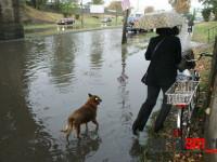 pasaj botizului inundat 5