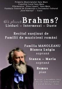 afis brahms 2015_