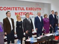 dragnea negresti oas comitet executiv psd (46)